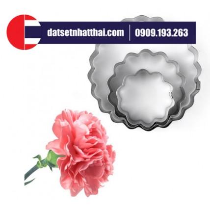 KHUÔN HOA CẨM CHƯỚNG HỌC LÀM HOA ĐẤT CARNATION FLOWER CLAY