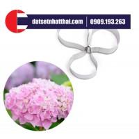 KHUÔN HOA ĐẤT SÉT CẨM TÚ CẦU - HYDRANGEA FLOWER CLAY CUTTER