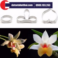 KHUÔN HOA ĐẤT SÉT LAN DENDRO CẮT - DENDROBIUM FLOWER CLAY CUTTER