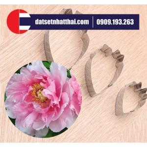 KHUÔN HOA MẪU ĐƠN MỚI LÀM ĐẤT SÉT NHẬT - FLOWER CLAY PEONY CUTTER