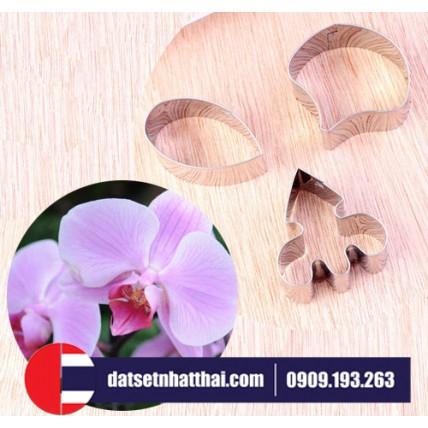 KHUÔN LÀM HOA ĐẤT SÉT HOA LAN HỒ ĐIỆP, Butterfly Orchid , Moth Phalaenopsis Orchid
