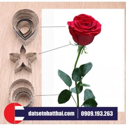 KHUÔN LÀM HOA HỒNG ĐẤT SÉT NGUYÊN BỘ - ROSE PETAL CUTTERS FULLSET