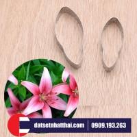 KHUÔN LÀM HOA LILY ĐẤT SÉT NHẬT THÁI - LILY FLOWER CLAY CUTTER
